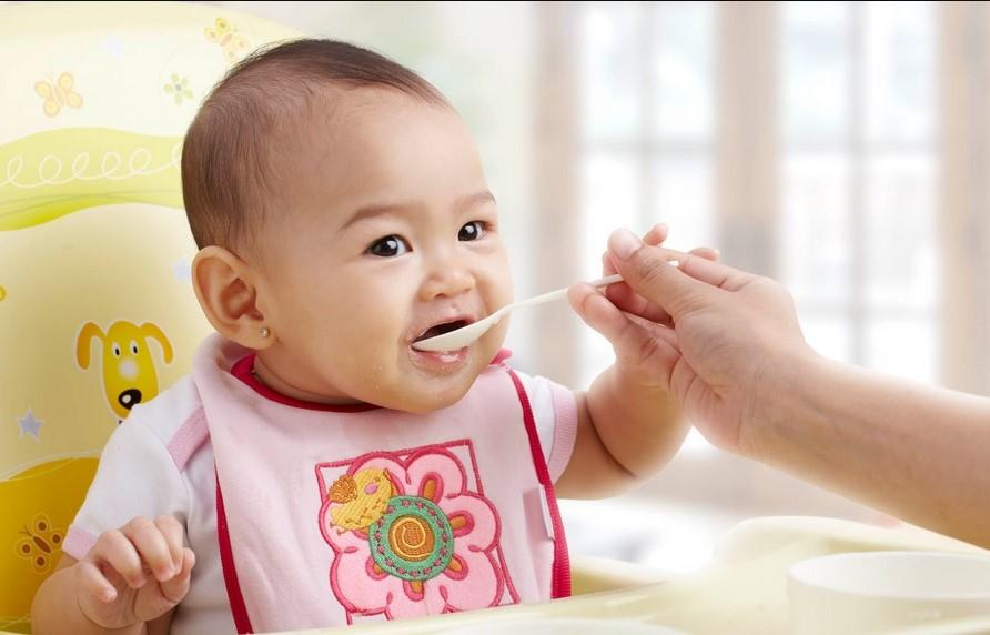 Image result for makanan pendukung asi