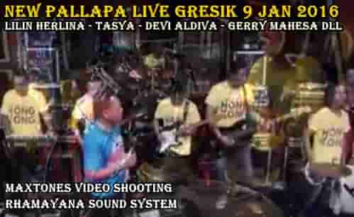 Download album New Pallapa terbaru live Gresik 2016