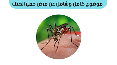 علاج حمى الضنك بالثوم, اهم جزء في علاج حمى الضنك, هل حمى الضنك خطير, اذاعة عن حمى الضنك, حمى الضنك ppt, حمى الضنك في مصر, اسئلة عن حمى الضنك, ,بحث عن حمى الضنك