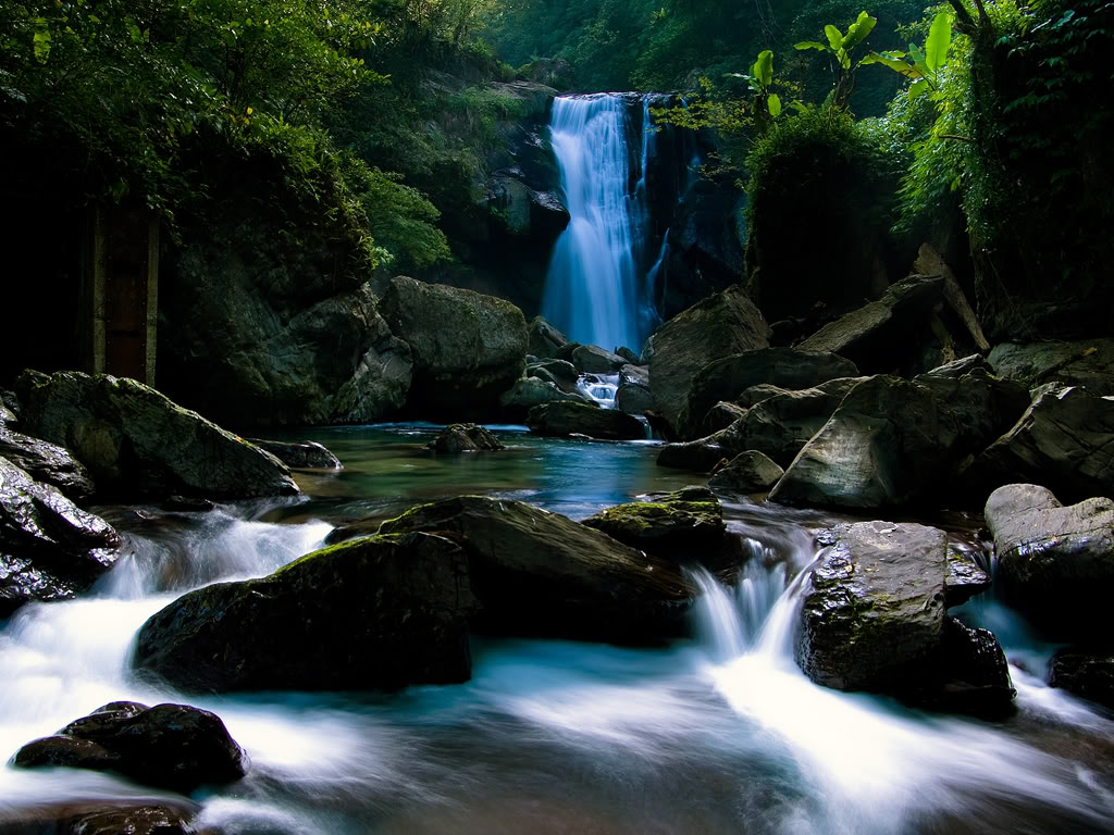 Wallpaper Collections: Best Nature Wallpapers Collection Ever