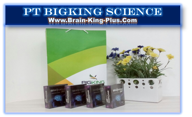 Brainking Plus International Nutrition, Brain King Plus Nutrisi Indonesia, Brain Nutrition Brainking Plus, Brainking Nutrition