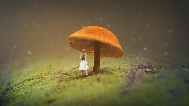 3 Miniature Photo Editing Photoshop - Photo Effects Tutorial
