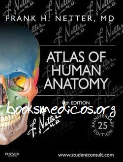 Atlas 6 netter of human pdf anatomy edition
