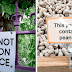 24 Clear Signs Humanity Is Devolving