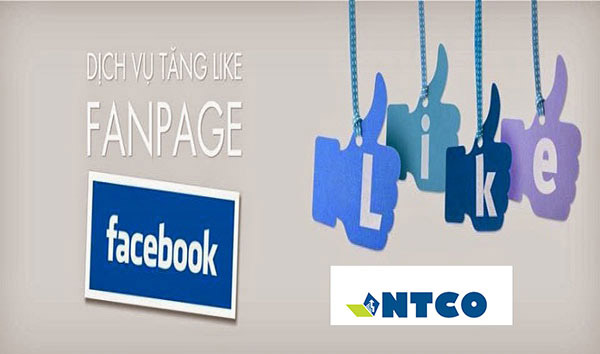 tang like fanpage facebook