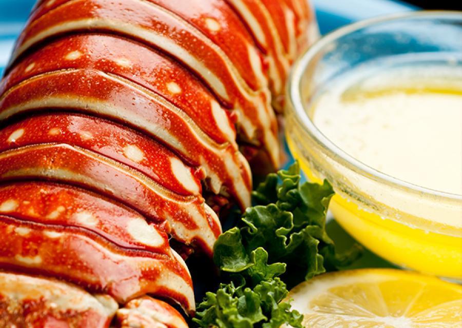 Wholesale Frozen Lobster Tails - Frozen Lobster Supplier ...