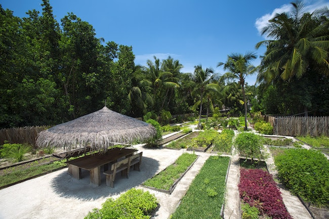7 Hotels Worldwide that Promotes Vegan Lifestyle