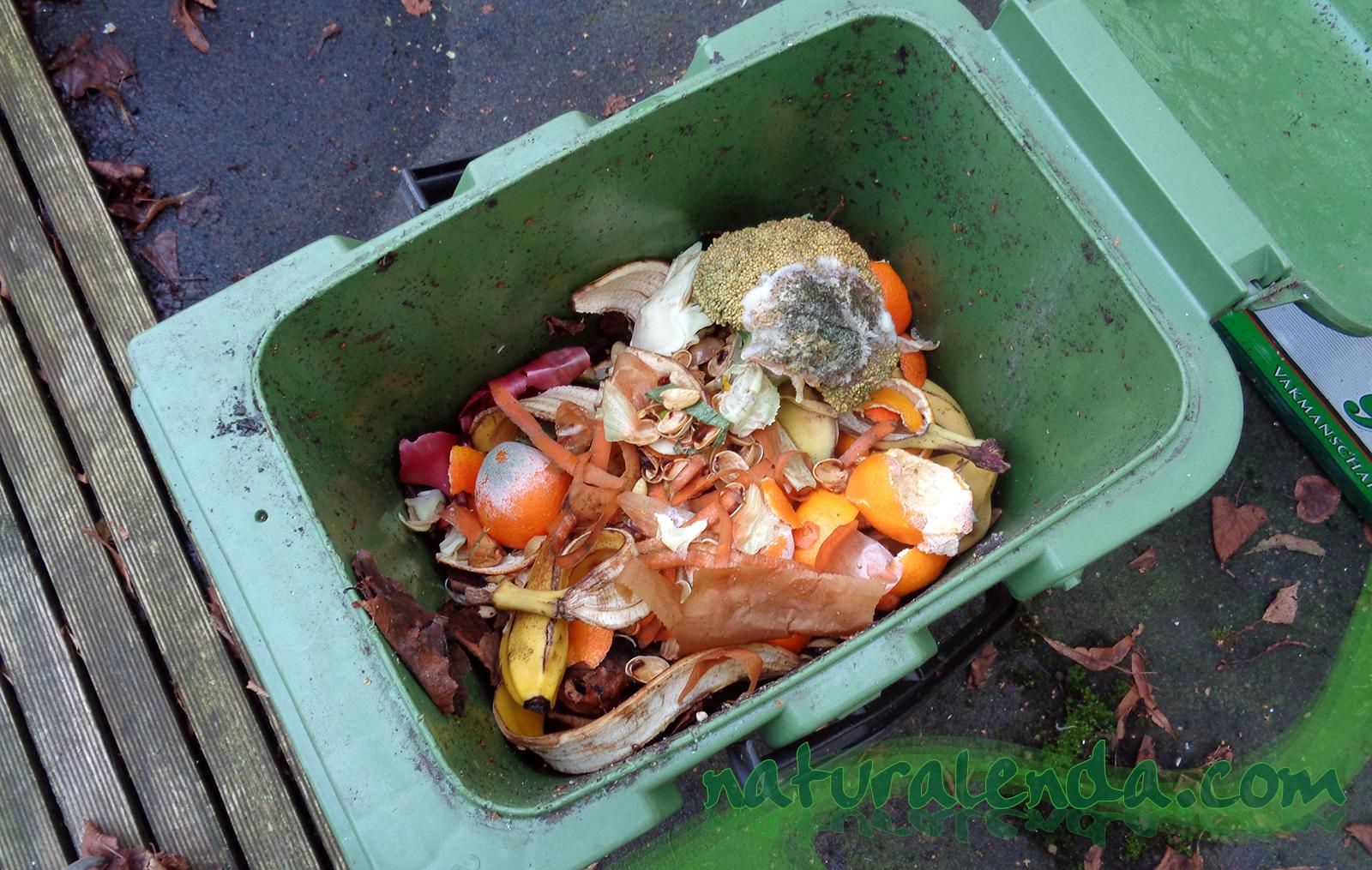 cubo de residuos organicos