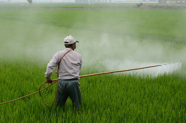 herbicide,agriculture,food,worm,green,damage,danger,kill