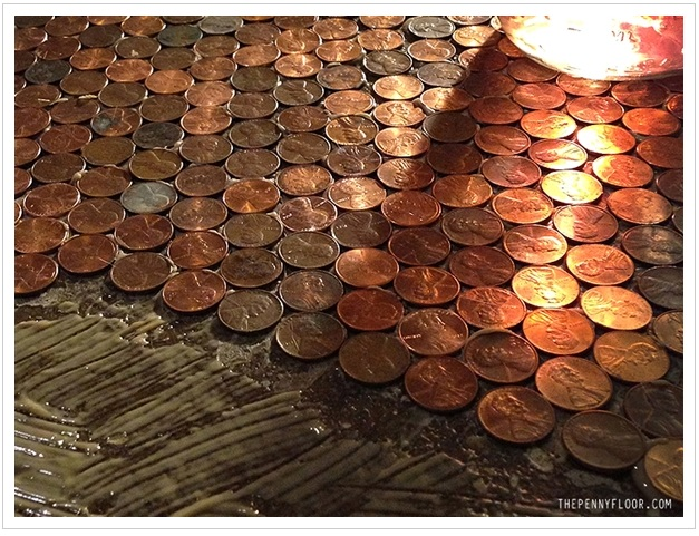 Have You Seen The Penny Floor