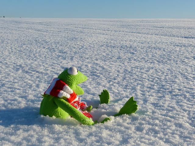 كآبة الشتاء