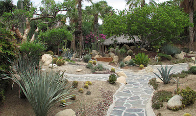 Taman Kecil Depan Rumah Mexican Style
