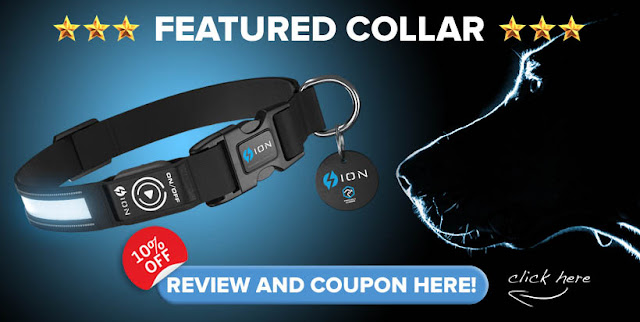 led-dog-collar-review