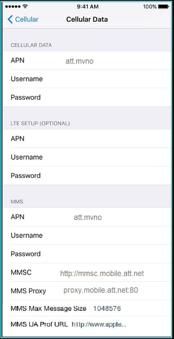 Black Wireless apn settings iPhone updated