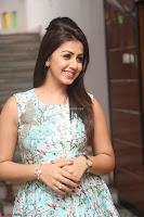 Nikki Galrani at Prema leela pelli gola trailer Launch ~  Exclusive 018.JPG