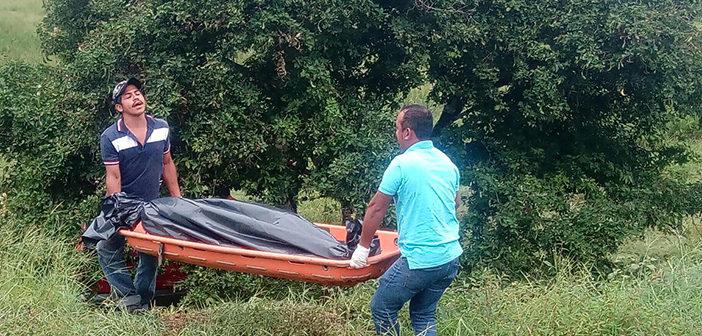 Veracruz: dejan camioneta con seis cadáveres