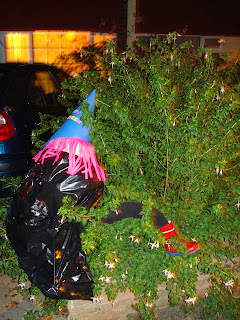 Crashed Witch in a hedge