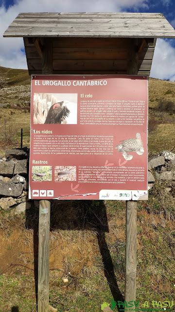 Cartel informativo del Urogallo en Villa de Sub