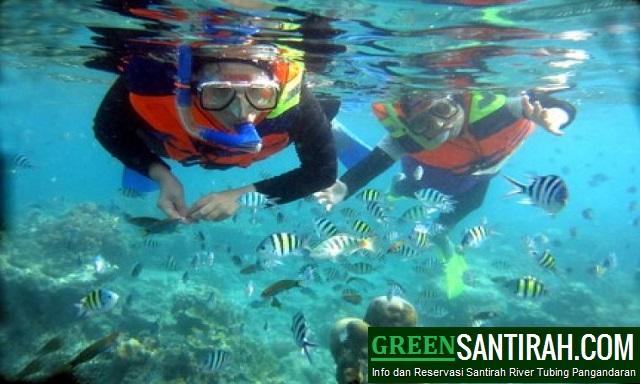 Paket Snorkeling Pangandaran