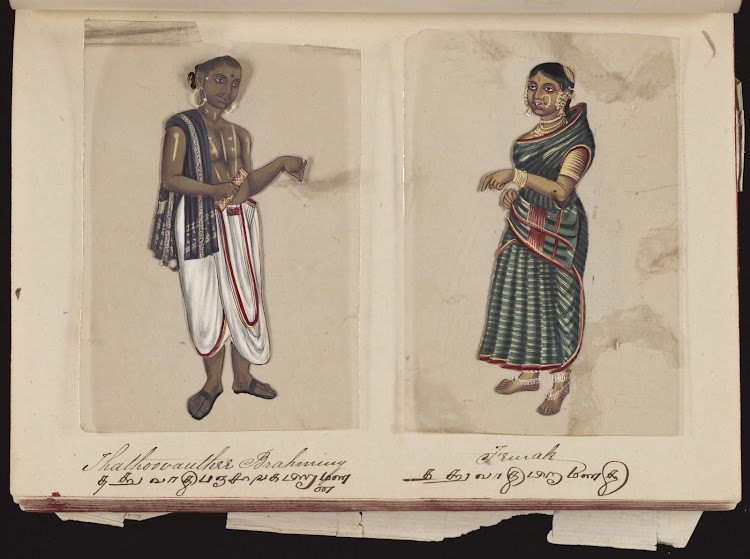 Thathoovauthee brahminy and Female