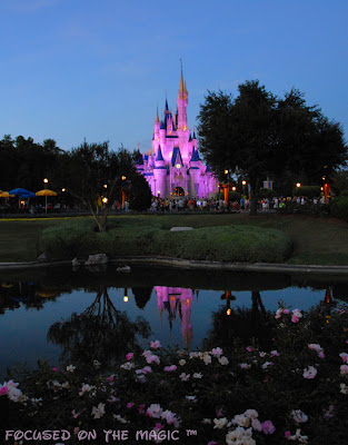 Pretty in Pink ~ Cinderella Castle ~ Focused on the Magic.com