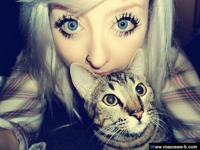 صور صور قطط كيوت 2020 خلفيات قطط جميلة جدا cats15.png
