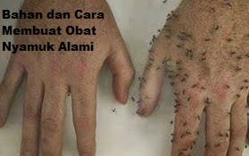 Bahan dan Cara Membuat Obat Nyamuk Alami