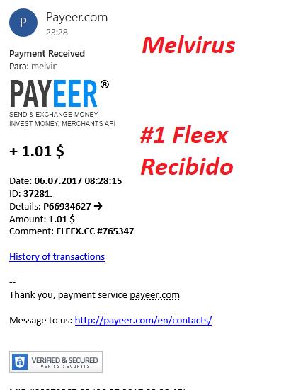 www.dineritoxinternet.com-fleex1pago