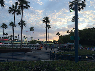 hollywood studios dusk