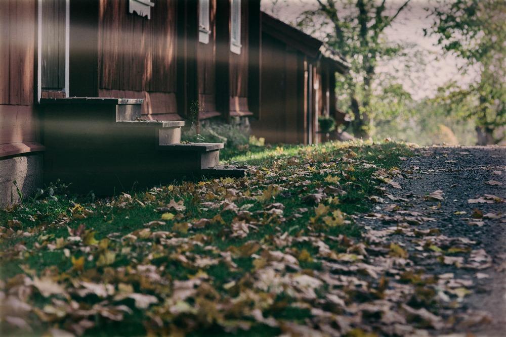 Inkoo, Fagervik, luonto, maaseutu, nature, Finland, visit Finland, Suomi, luonto, outdoors, Visualaddict, valokuvaaja, Frida Steiner, Frida S Visuals, syksy, autumn, fall, stillography, stillphoto