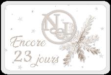 Le Noël blanc de DCS - 2