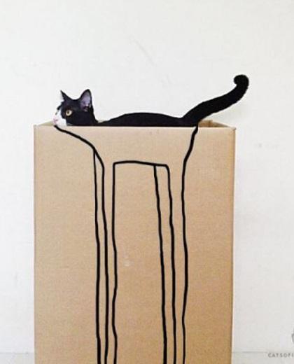 carton et chat 26