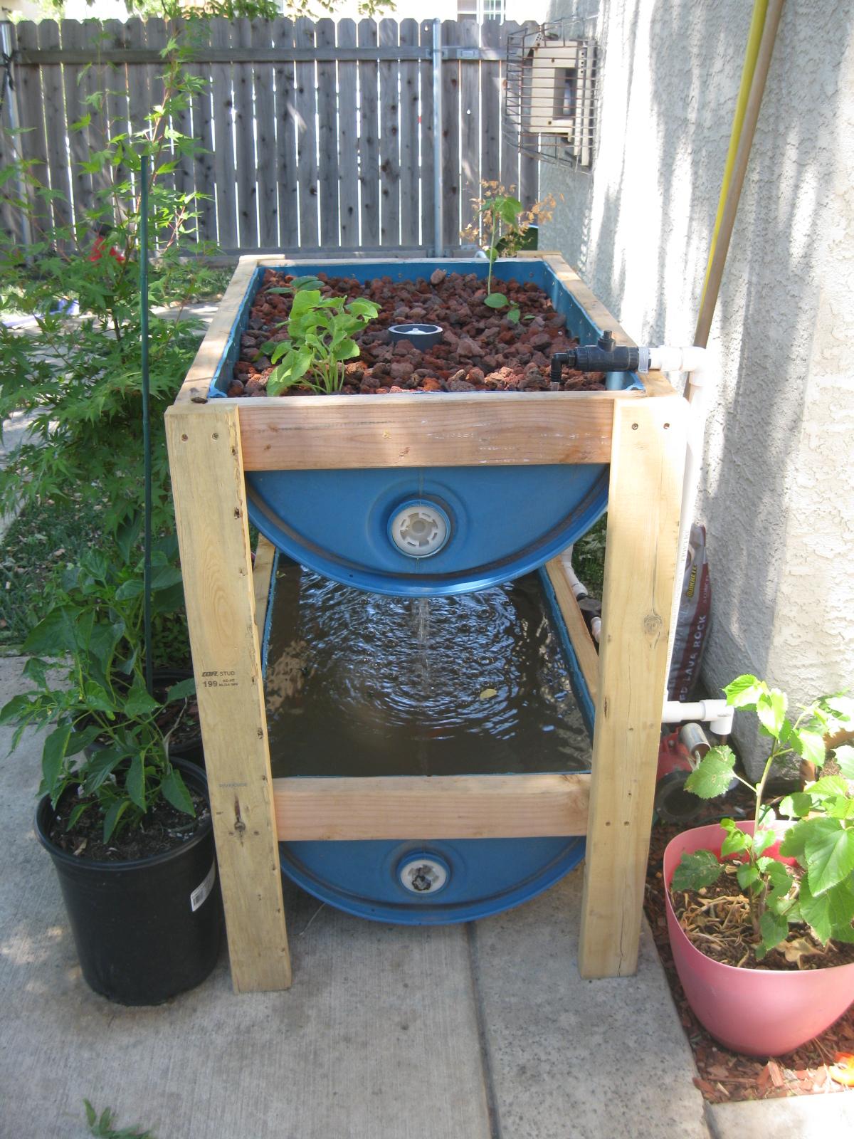 Aquaponics backyard liberty Guide ~ Waters sistem