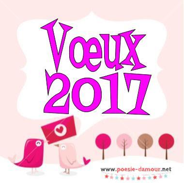 Bonne année 2017 sur cartes de vœux