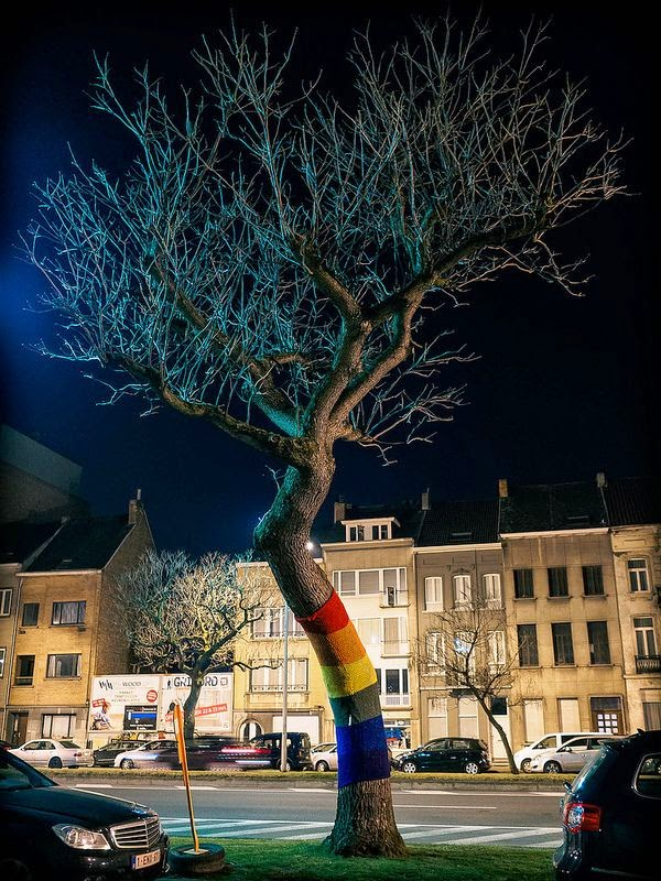 10 Best Places to Holiday in Belgium (100+ Photos) | Midnight Rainbow Tree, Mechelen, Belgium