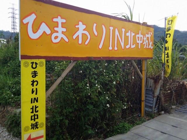 ひまわりIN北中城の写真