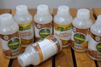 Cara Mengatasi Beragam Penyakit Dengan QnC Jelly Gamat