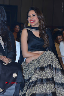 Om Namo Venkatesaya Telugu Movie Audio Launch Event Stills  0078.JPG