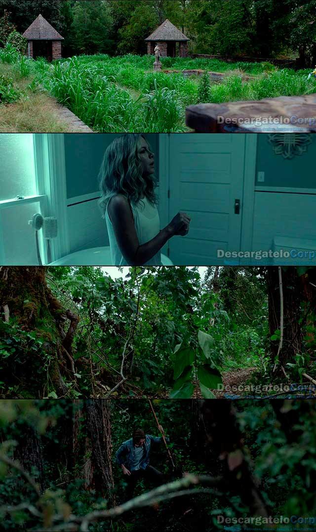 El ático (2016) HD 720p