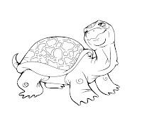 Coloring Turtles