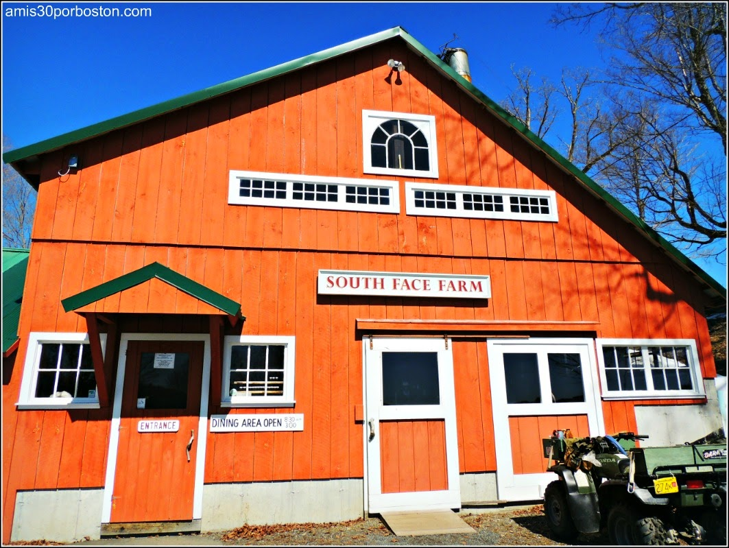Maple Sugar Season en Massachusetts: South Face Farm