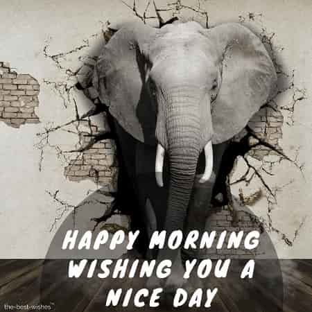 happy morning wishing you a nice day with elephant