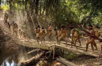 Il nuovo presidente del Brasile, Jair Bolsonaro, ha promosso un piano per vendere le parti più importanti della foresta pluviale amazzonica all'agrobusiness, alle miniere, e l'energia idroelettrica.