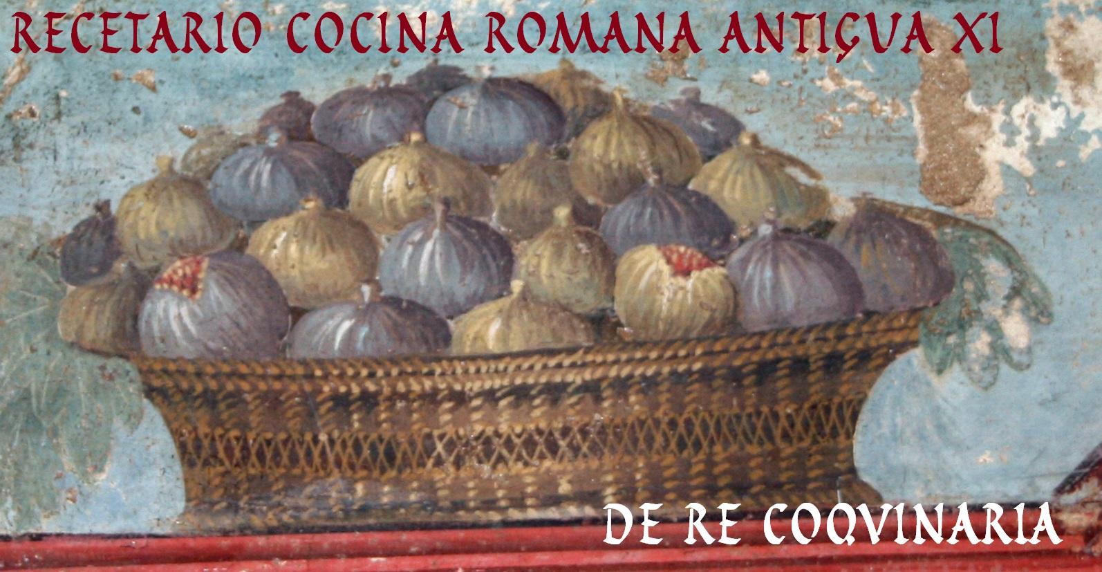 De Re Coqvinaria Recetario Cocina Romana Antigua Xi