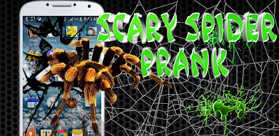 Scary Spider on Hand Prank