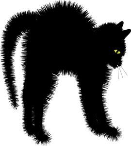divertido gato negro estufado