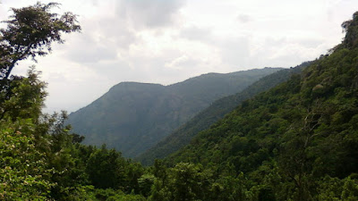 Servarayan hills Yercaud Salem