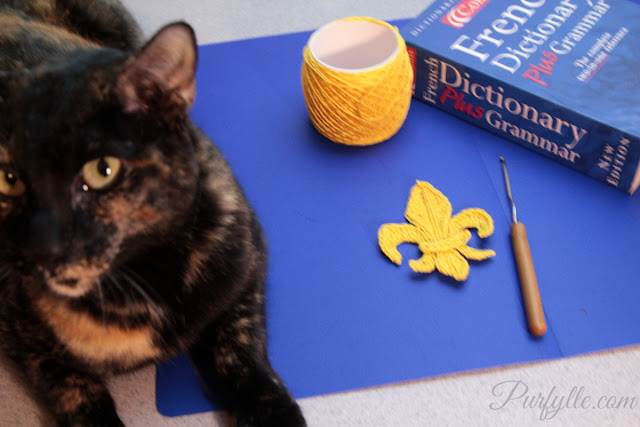 Ada-cat loves to 'help' with project photos