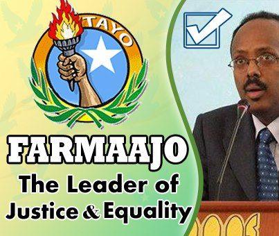 Terror Free Somalia Foundation: magacyada xildhibaannada
