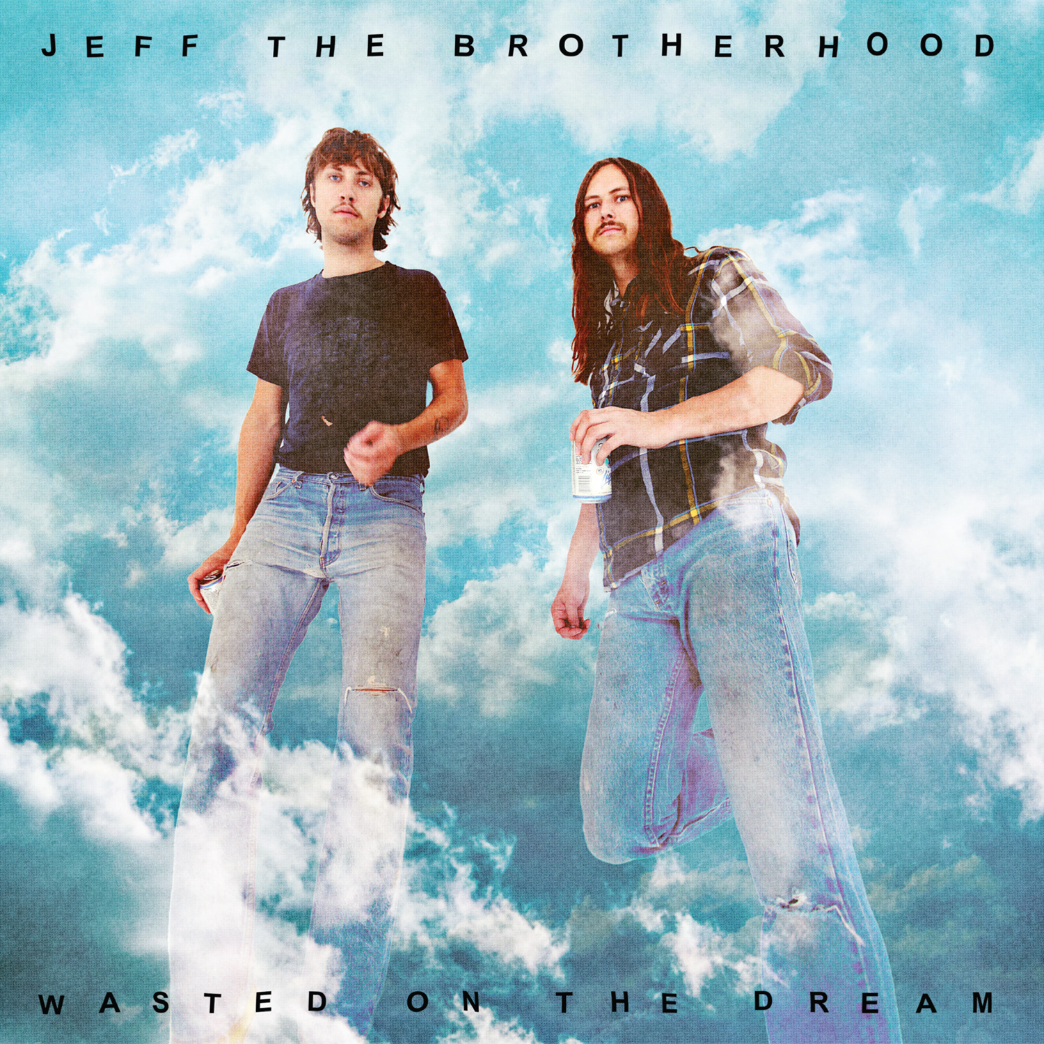 My Head is a Jukebox  Jeff The Brotherhood   « Wasted on the dream » e997c3ae20